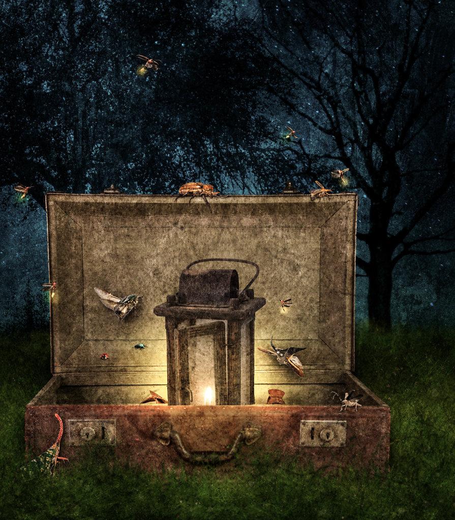 Portal to the Beetle Kingdom